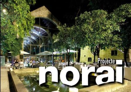 Projecte NORAI